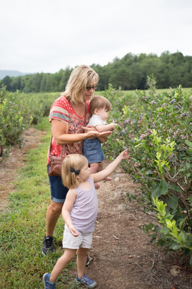 FamilyJuly2019_BerryPicking-24