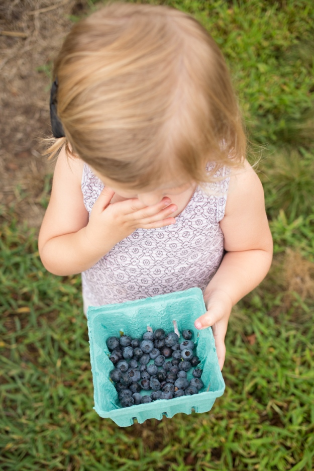 FamilyJuly2019_BerryPicking-4
