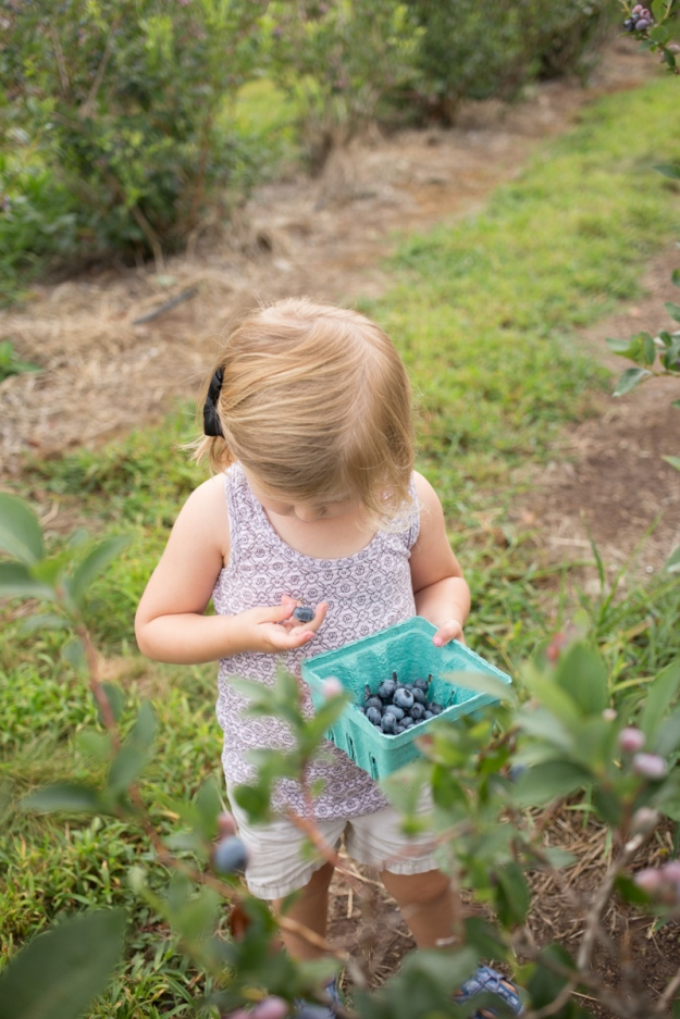 FamilyJuly2019_BerryPicking-9